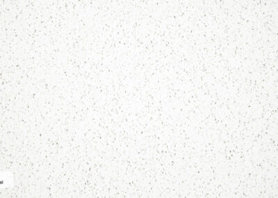 E 603 Snowy Montreal